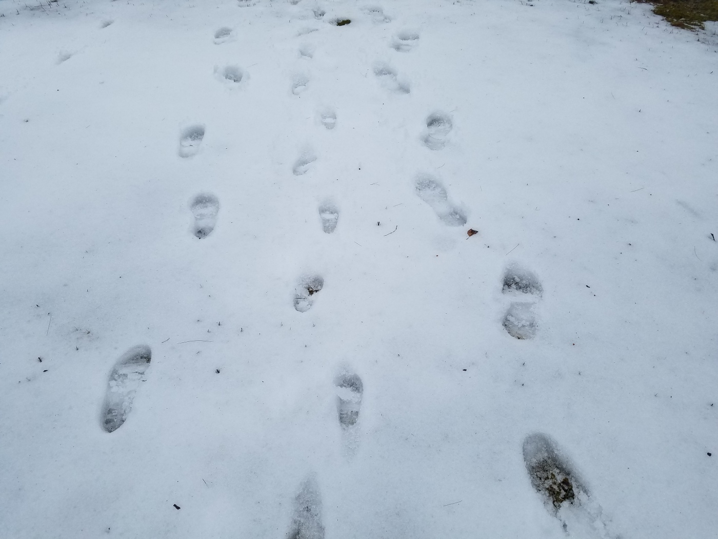 Better Beauty Vermont Footprints in snow toddler and mom