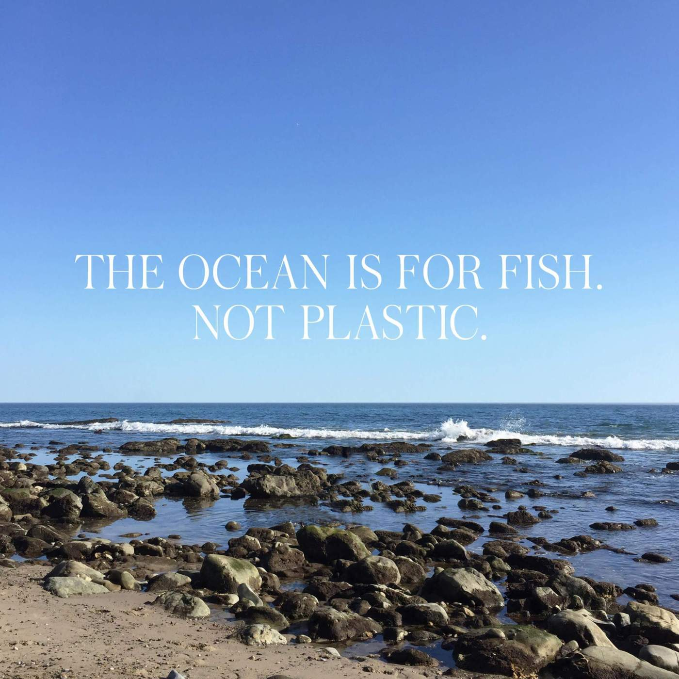 Better Beauty Vermont The Ocean is for Fish not Plastic