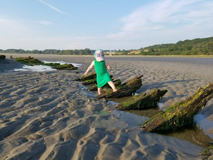 Better Beauty Vermont Higgins Beach shipwreck exploring