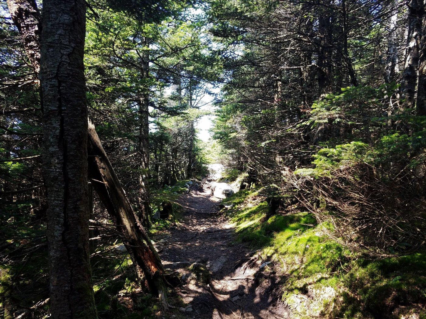 Better Beauty Vermont Get Outside- Enjoy Nature