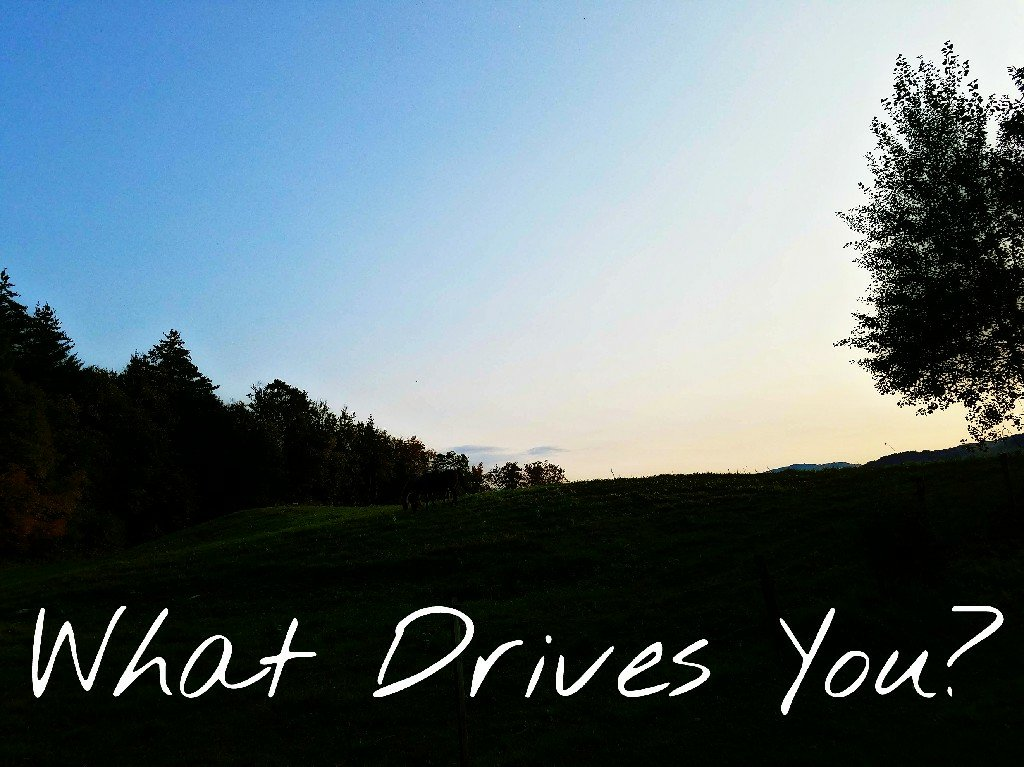 Better Beauty Vermont- What Drives You?