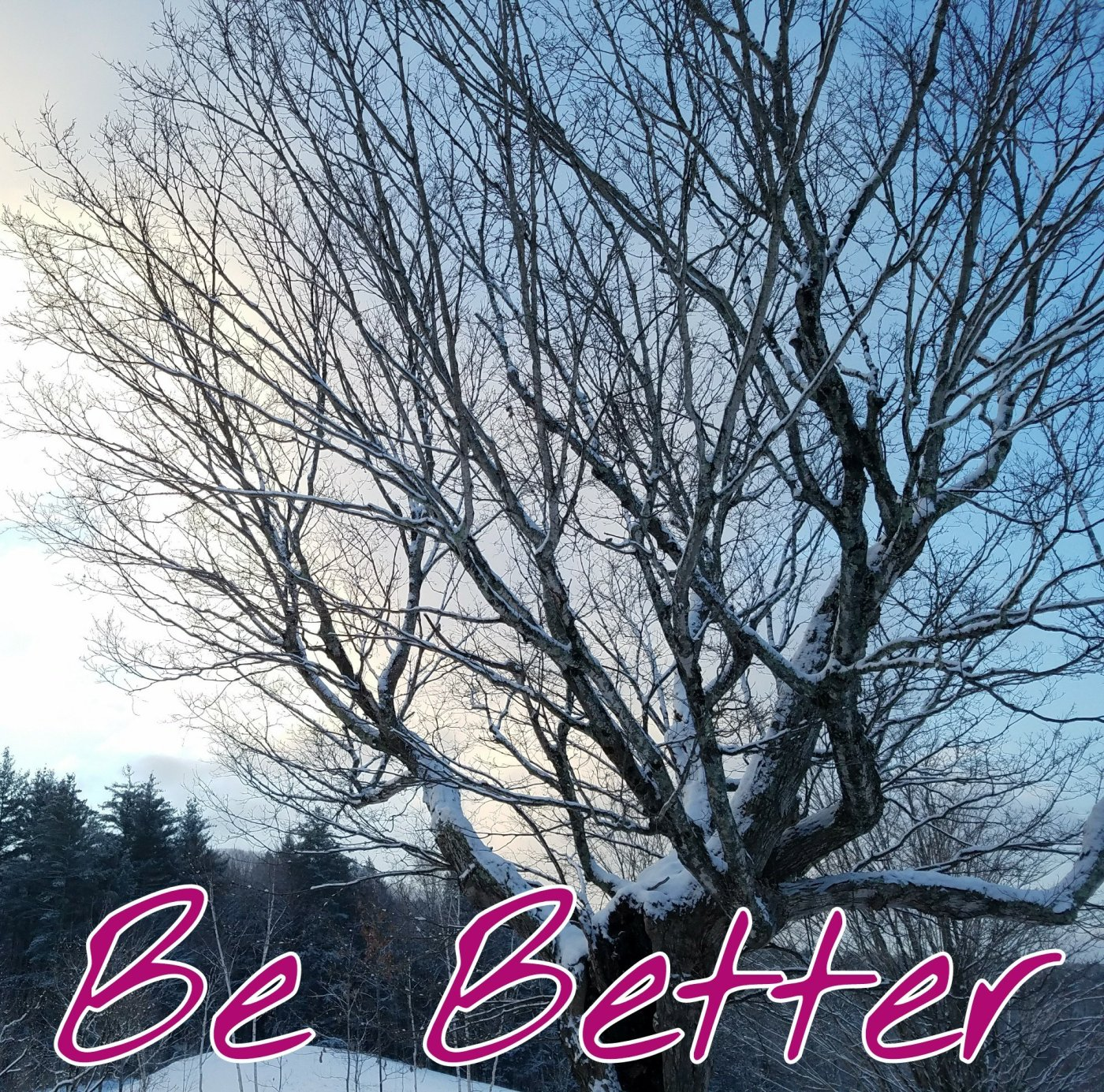 Better Beauty Vermont- Be Better